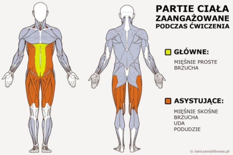 cwiczenia na brzuch 02 - Trening w domu - Ćwiczenia na brzuch
