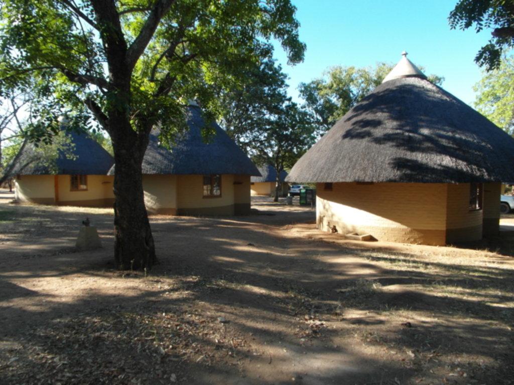 RPA 025 1024x768 - Park Narodowy Krugera - safari!