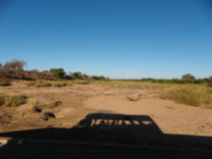 RPA 037 300x225 - Park Narodowy Krugera - safari!