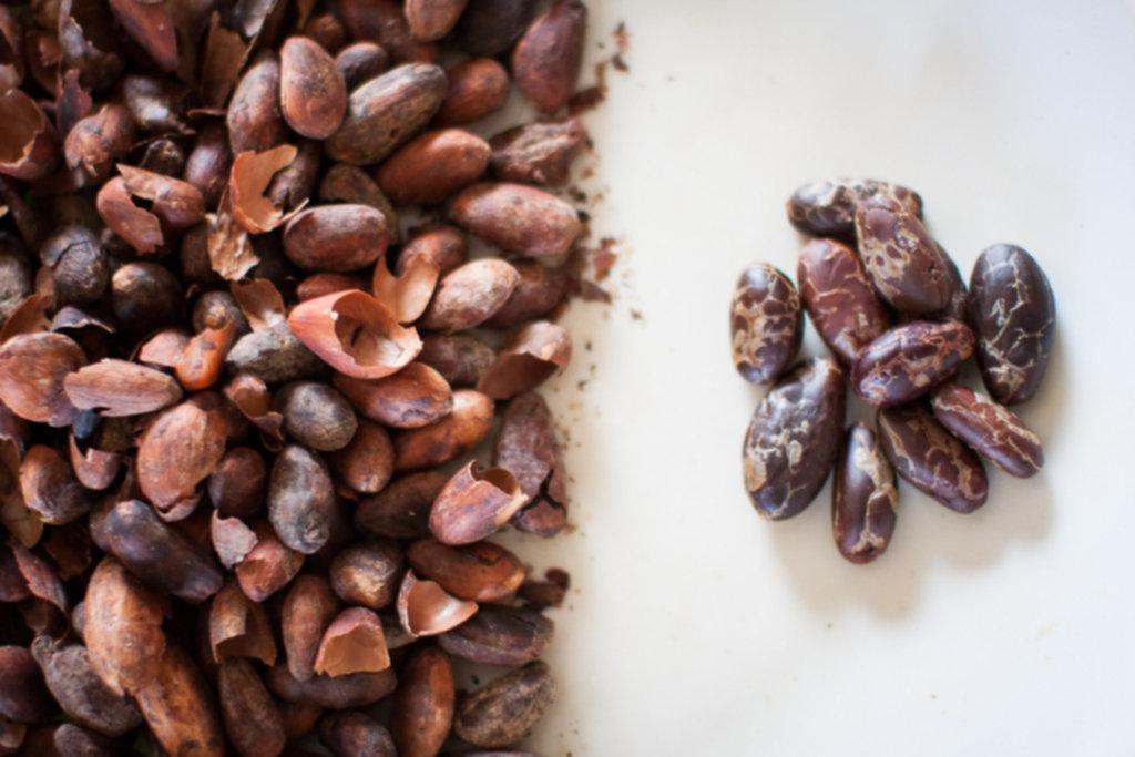 IMG 3470 1024x683 - Owoce kakaowca - 100 % kakao