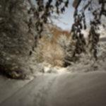 IMG 0143 150x150 - Trzy Korony w zimie