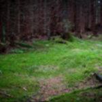 IMG 4630 150x150 - Rewelacyjna pogoda w Tatrach Zachodnich