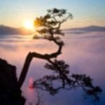 IMG 6460 150x150 - Wschód słońca na Sokolicy