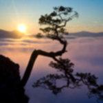 IMG 6462 150x150 - Wschód słońca na Sokolicy