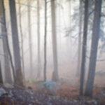 IMG 6486 150x150 - Wschód słońca na Sokolicy