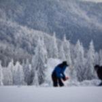 IMG 1089 150x150 - Wintercamp 2013 - relacja