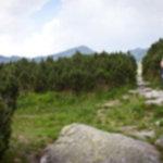 IMG 5787 150x150 - Zawrat w Tatrach Wysokich