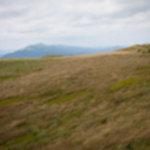 IMG 5994 150x150 - Bieszczady - tam gdzie mieszkają Hobbity
