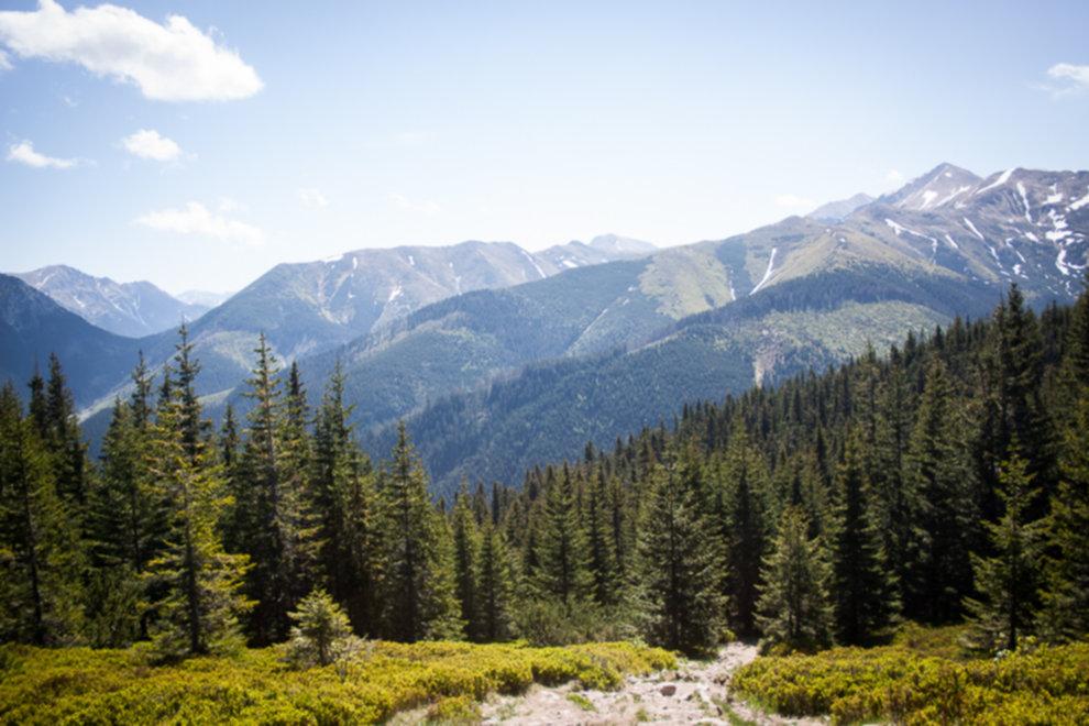 IMG 3009 - Niedziela w Tatrach Zachodnich
