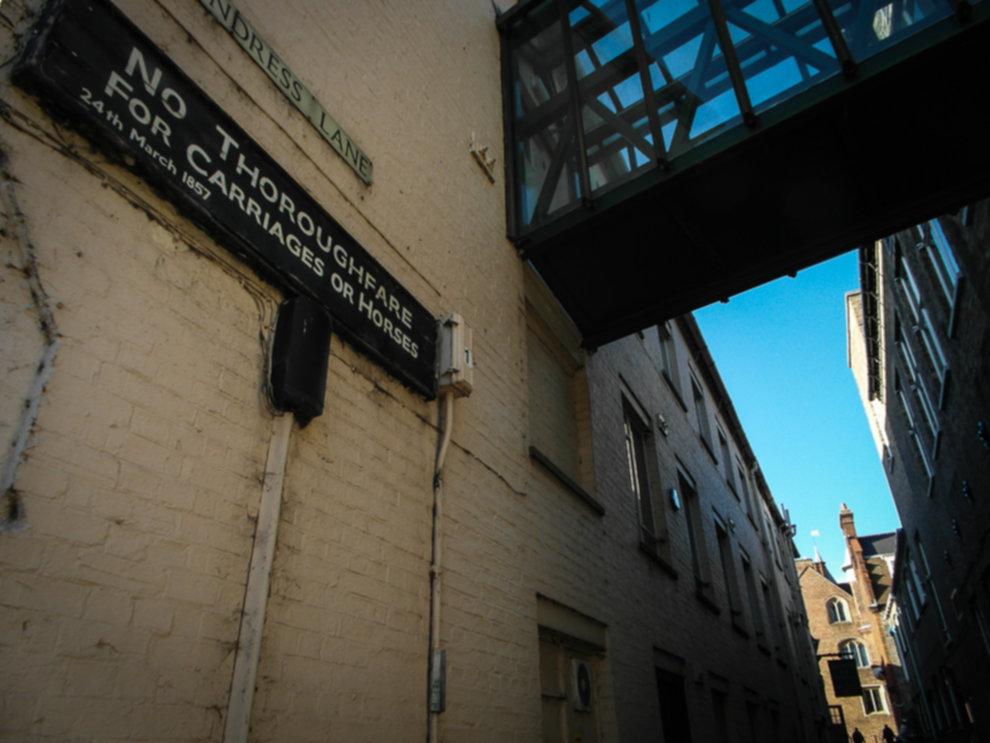 cambridge 27.02 093 - Miasto w 48 godzin:  Cambridge
