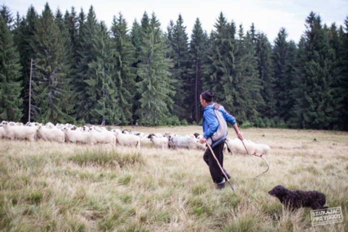 off road rumunia 05 - Off Road w Rumuni - Timex Expedition Team