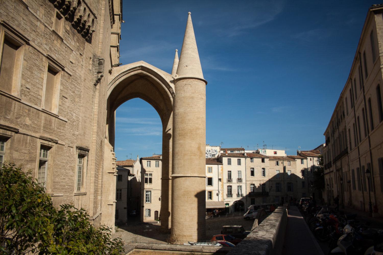 IMG 8920 - Co warto zwiedzić w Montpellier?