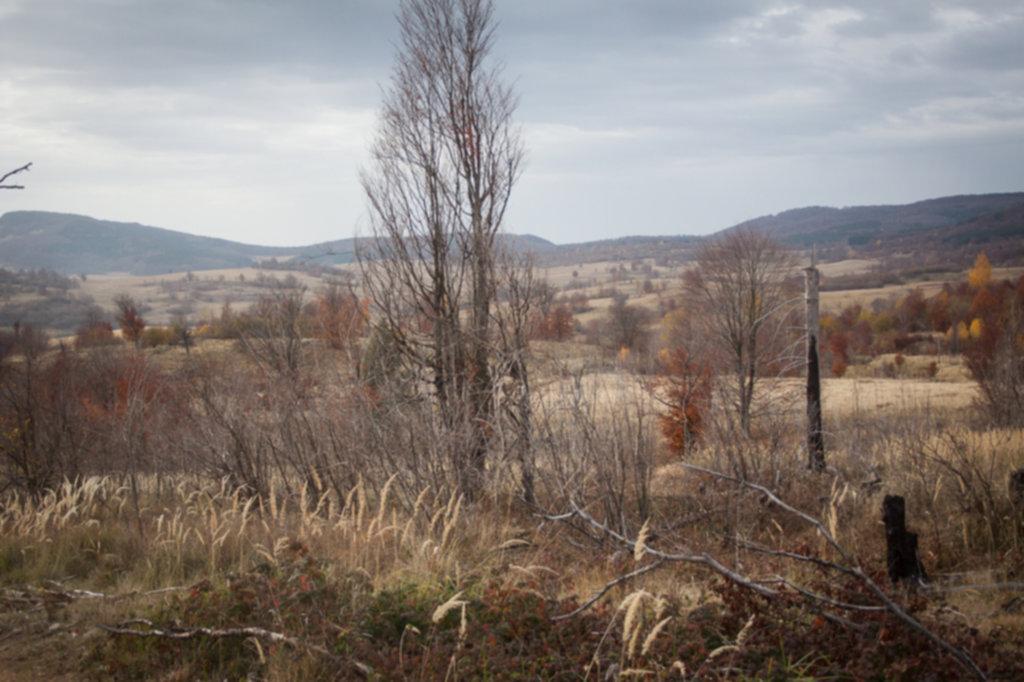 IMG 9642 1024x682 - Off-road w Rumunii - Listopad 2014