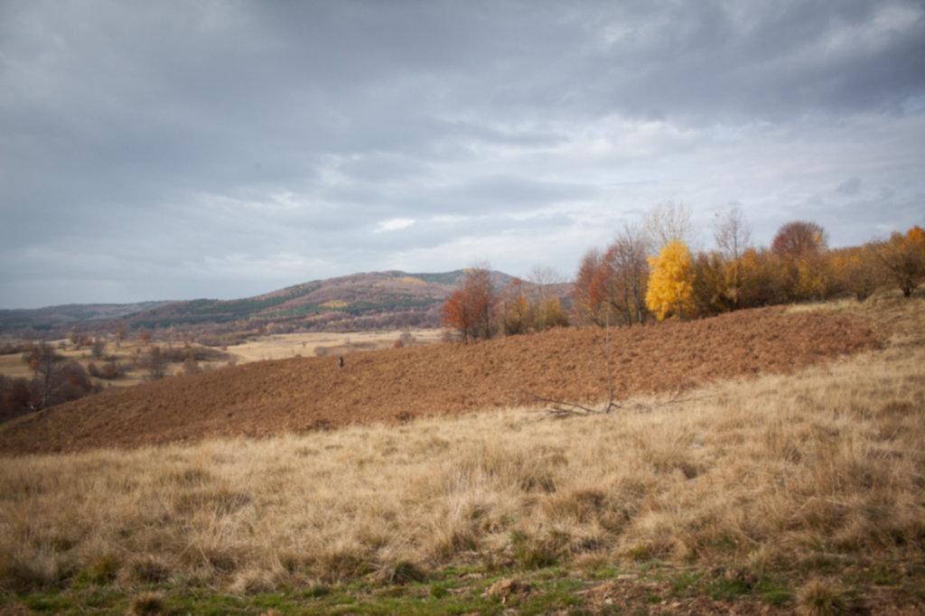 IMG 9649 1024x682 - Off-road w Rumunii - Listopad 2014