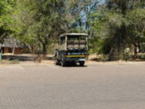 RPA 018 300x225 - Park Narodowy Krugera - safari!