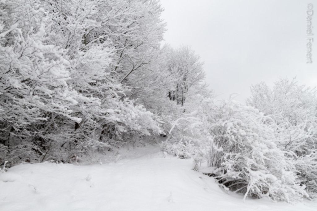 IMG 1944 1024x682 - Zima w Beskidzie Wyspowym