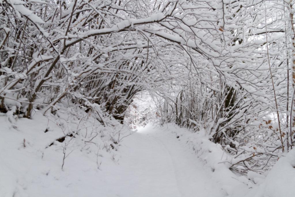 IMG 1946 1024x682 - Zima w Beskidzie Wyspowym