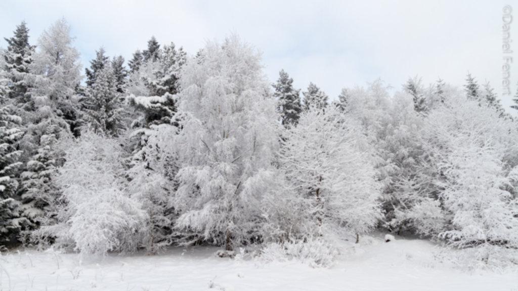 IMG 1948 1024x576 - Zima w Beskidzie Wyspowym