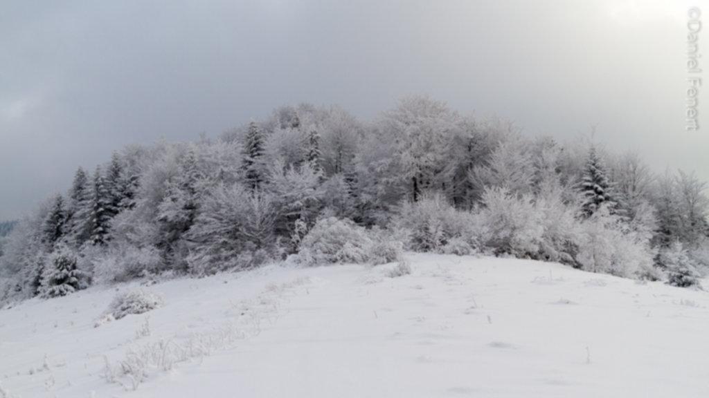 IMG 1975 1024x576 - Zima w Beskidzie Wyspowym