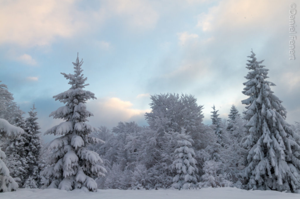 IMG 1993 1024x682 - Zima w Beskidzie Wyspowym