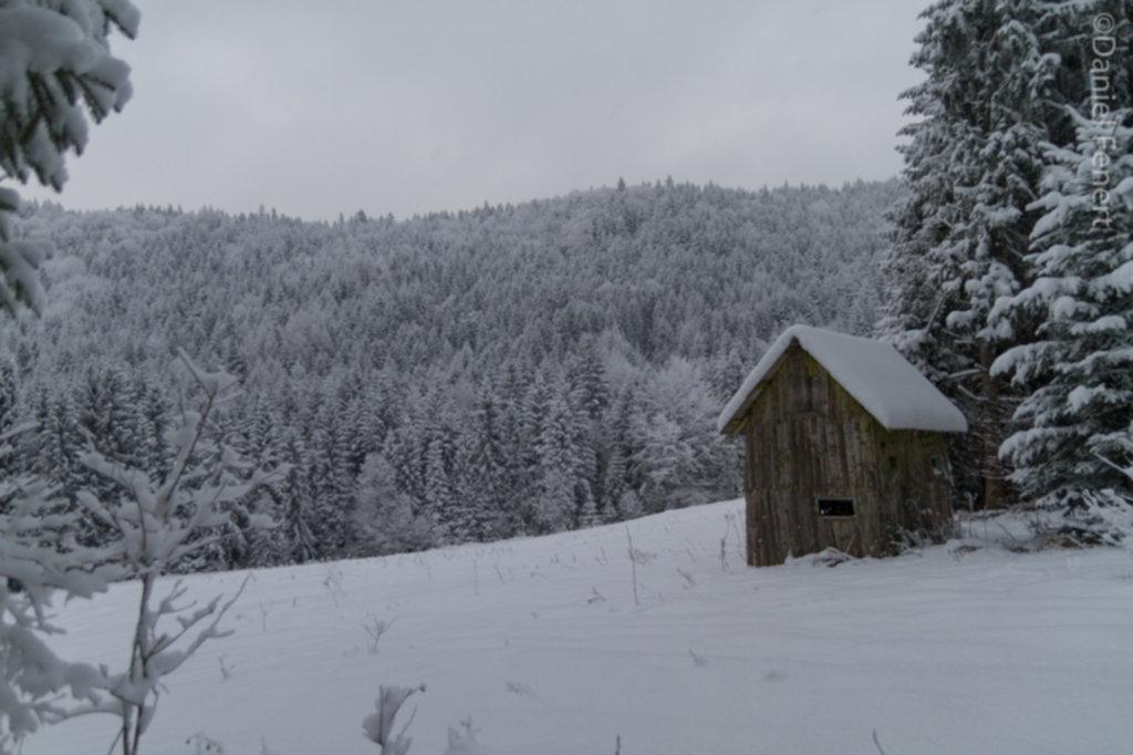 IMG 2006 1024x682 - Zima w Beskidzie Wyspowym
