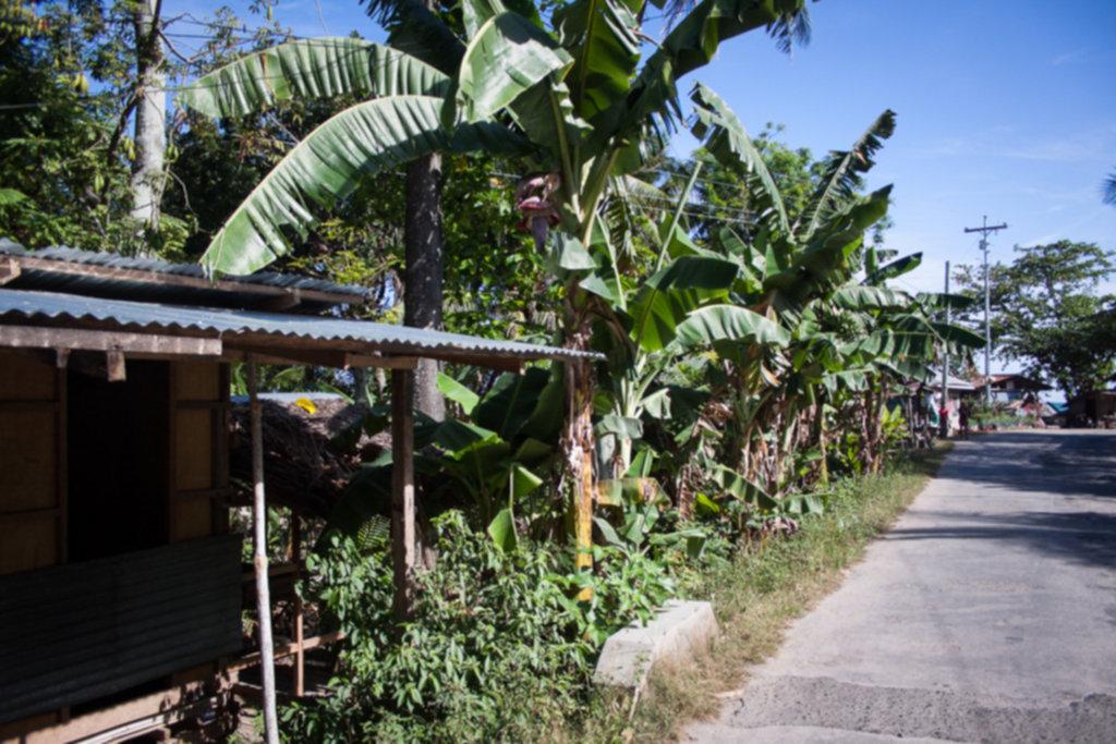 IMG 3118 1024x683 - Filipiny - pierwsze wrażenie