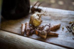 IMG 3973 300x200 - Siquijor – spotkanie z szamanem