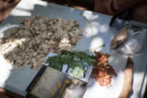 IMG 3986 300x200 - Siquijor – spotkanie z szamanem