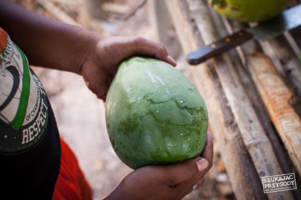IMG 4432 1024x683 - Smażona zielona papaja