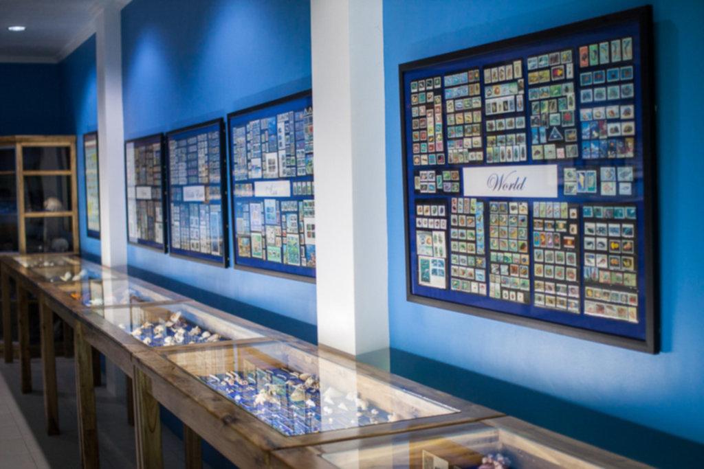 IMG 8877 1024x683 - Muzeum muszli - Siquijor