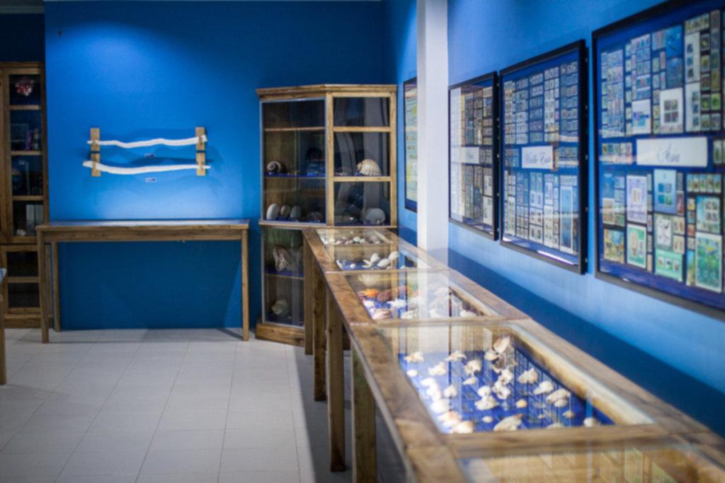 IMG 8879 1024x683 - Muzeum muszli - Siquijor