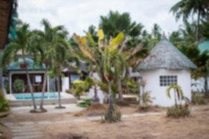 IMG 8932 300x200 - Zakup ziemi na Filipinach