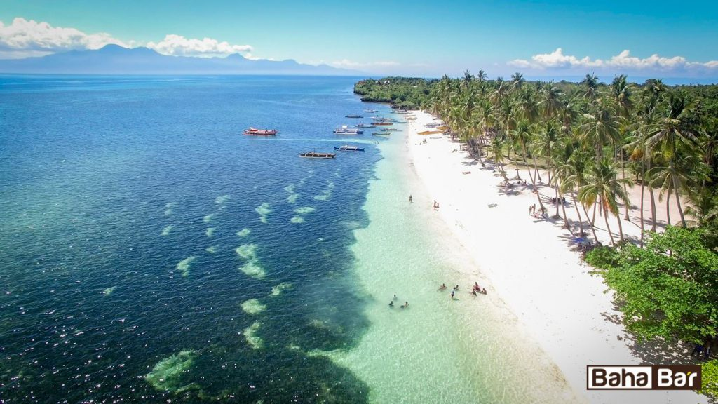 20934077 657045567822481 7689753968447368721 o 1024x576 - Ile kosztuje nurkowanie na Filipinach?